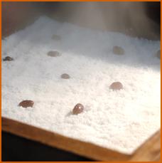 甘納豆蒸し餅(ペッソルギ)