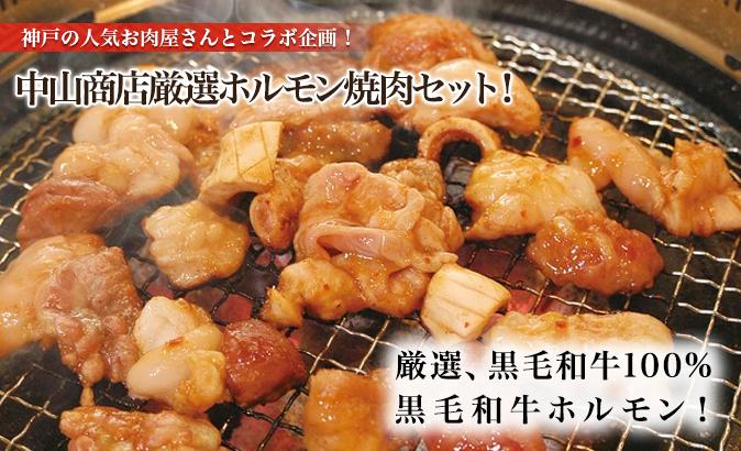 中山商店厳選ホルモン焼肉セット